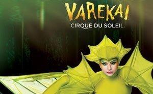 В Сочи начались гастроли Цирка дю Солей