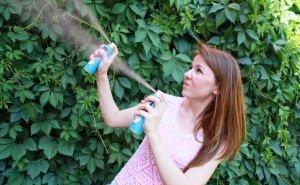 Усть-Лабинский район Кубани страдает от нашествия комаров