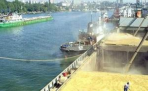 Кубани грозит срыв сроков поставок и экспорта зерна