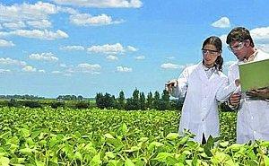 В Краснодаре хотят создать Инновационный аграрный центр