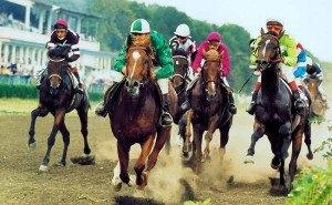 В Краснодаре прошли скачки на Кубок губернатора