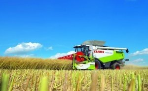 На Кубани началась уборка риса