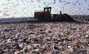 Сочи утопает в мусоре