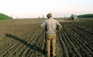 Фермеры Кубани просят продлить льготную приватизацию сельхозземель