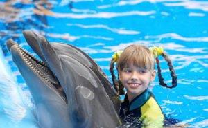 О пользе дельфинотерапии