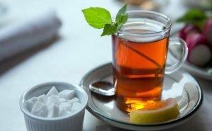 В Сочи смогут выращивать морозостойкие сорта чая
