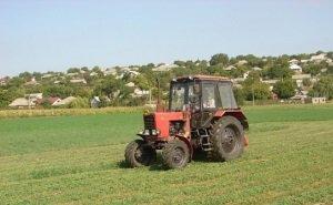 Власти Кубани намерены контролировать сданную в аренду землю