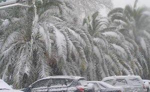 Снегопад в Сочи показал полную беспомощность коммунальных служб
