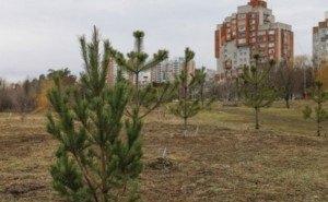 Краснодарцы просят создать «Народный парк» у Карасунских озёр