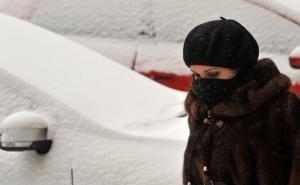 Что губит кубанцев зимой?