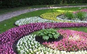 Питомник растений на Кубани — один из самых известных в России