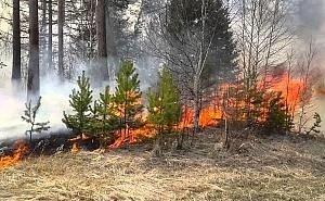 Кубань готовится к пожароопасному сезону