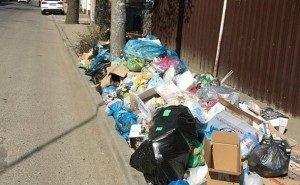 Краснодарцы жалуются на непонятное исчезновение мусорных баков