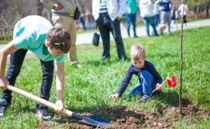 В Краснодаре проведут фестиваль парковых зон