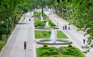 На Кубани, благодаря экологам, не застраиваются зелёные зоны и закрываются свалки