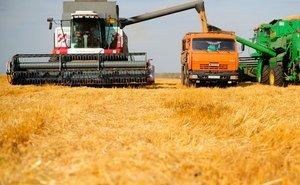 Кондратьев попросил сократить число проверок в АПК во время уборки урожая