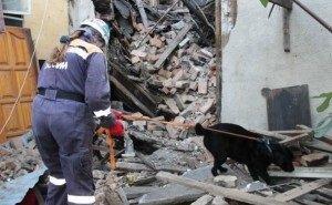 Жильцы рухнувшего дома, где погиб человек, сами не хотели переезжать из ветхого жилья
