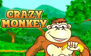 Играть бесплатно в слот Crazy Monkey