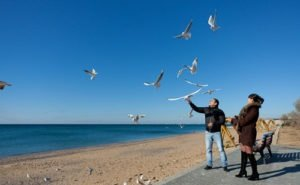 На Кубань привлекают туристов во внесезон низкими ценами