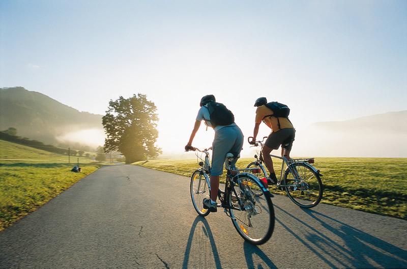 Велосипеды: краткая характеристика популярных классов