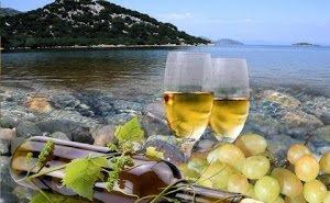 Кубанских виноделов станут меньше контролировать
