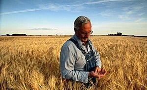 На Кубани будут введены новые программы господдержки аграриев