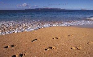 Пляжи Кубани хотят увеличить, чтобы принять ещё больше туристов