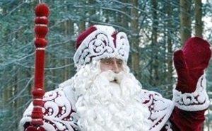 Главный российский Дед Мороз одобрил идею подарить новогодним ёлкам вторую жизнь