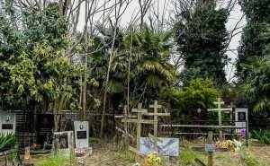 В Сочи вместо садов хотят обустроить кладбище
