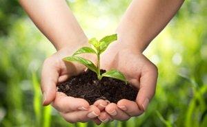 На Кубани вступил в силу закон, направленный на сохранение плодородия почвы