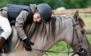 Кондратьев: Кубани без лошадей быть не может