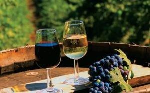 На Кубани могут снизить админбарьеры для виноделов