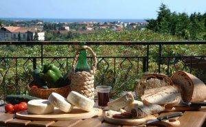 Развивать агротуризм Кубани помогут французы