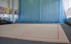 Свойства ковра для художественной гимнастики