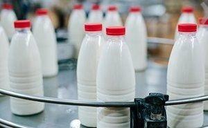 На Кубани ужесточают проверки по выявлению «молочного» фальсификата