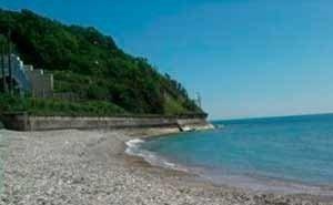 Кондратьев требует наказывать арендаторов, нарушивших сроки открытия пляжей