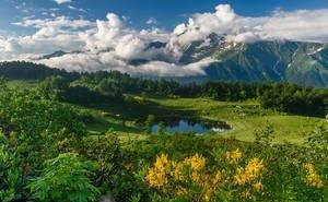 ЮНЕСКО может перевести «Западный Кавказ» в статус «объект под угрозой»