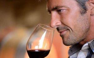 Кубань просит дать ей право выдавать лицензии на производство вин