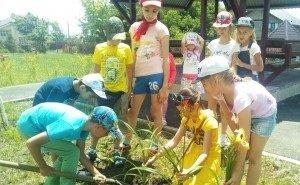 В детских лагерях Кубани готовятся к аграрным и казачьим сменам