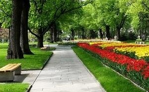 На Кубани обсудили сохранение зелёных зон