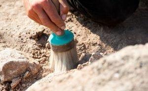 Артефакты, найденные новороссийскими археологами, заинтересовали немецких учёных