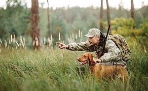 Что изменилось в охотничьих угодьях Краснодарского края с приходом хозяина?