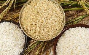 В Краснодаре обсудят наращивание экспортного потенциала риса