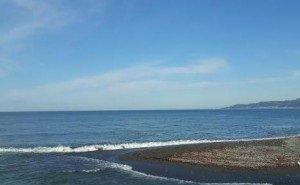 Чёрного моря может на всех не хватить, — эксперты