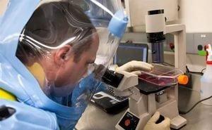 На Кубани появится лаборатория диагностики опасных болезней сельхозживотных