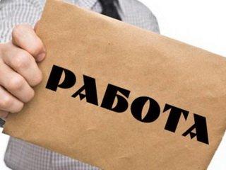 Способы поиска работы в современном мире от jobsavior.ru