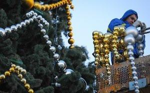 В Краснодаре начали устанавливать главную городскую ёлку