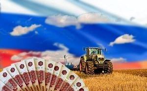 Динамика привлечения инвестиций в АПК Кубани демонстрирует стабильный рост