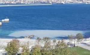 В Новороссийске в море обнаружен выброс странного вещества