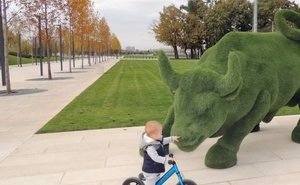 Вандализм по-русски: почему в Краснодаре не берегут парк Галицкого?